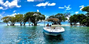 Experience Biscayne Bay Driving a Boat